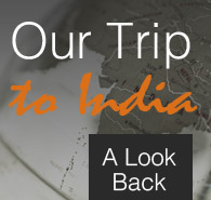 Our Trip to India: A Look Back
